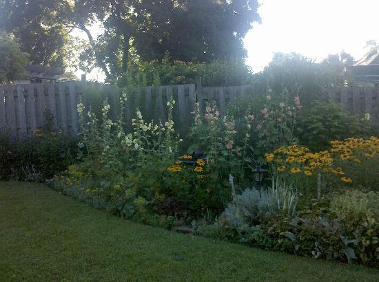 Absolute Elegance Bed and Breakfast : Backyard/Garden picture 3 