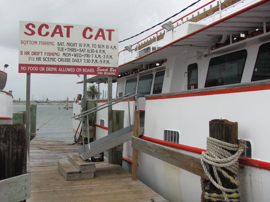 Port Aransas, Τέξας: Dock of Scat Cat