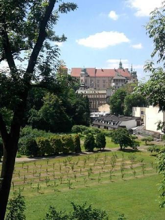 Orange Hostel Krakow: Wawel Castle view
