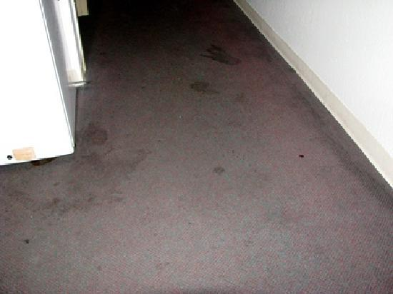 BEST WESTERN PLUS Elizabeth City Inn & Suites: Stains and filth