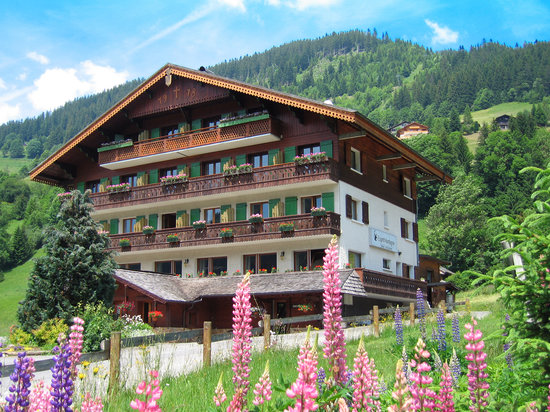 Photo of Hotel Esprit Montagne La Chapelle-D'Abondance