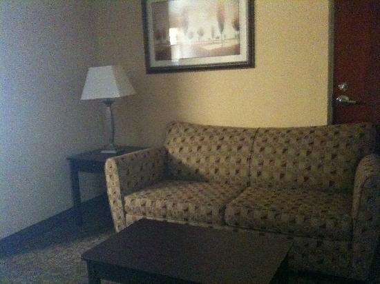 Holiday Inn Express & Suites DFW Airport South Hotel : Seperate sleeper sofa