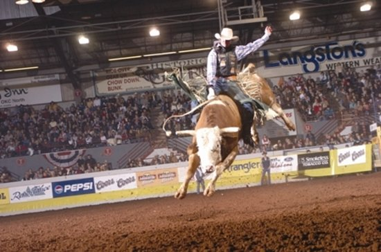 Visit an Oklahoma rodeo to experience authentic western heritage firsthand.