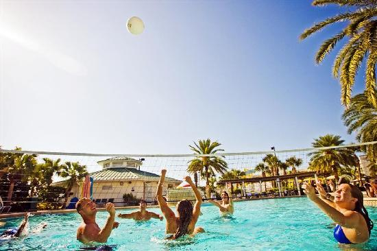 Ron Jon Cape Caribe Resort: Volleyball!