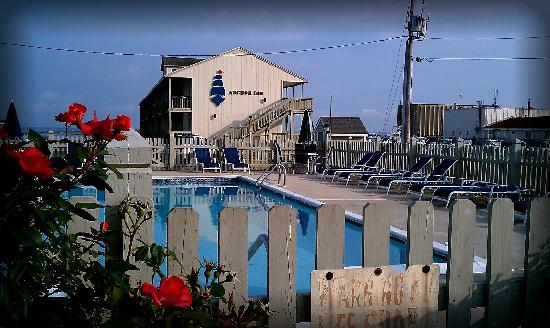 Anchor Inn: Beautifully landscaped pool. One night we swam under a beautiful full moon.