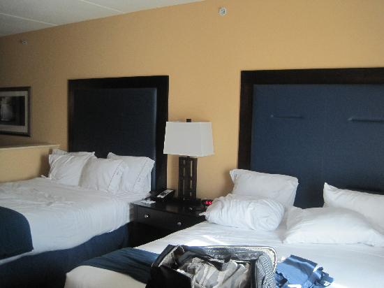 Holiday Inn Express Hotel & Suites Wilmington-Newark: room