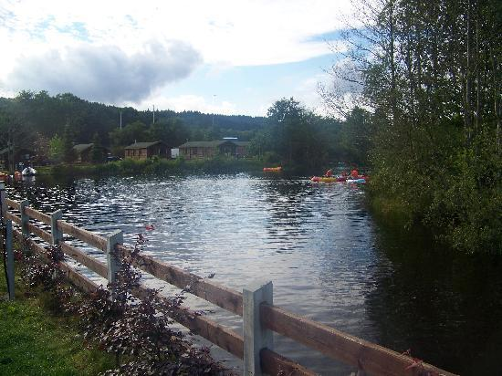 Rathdrum, Ireland: River that the kids enjoyed!