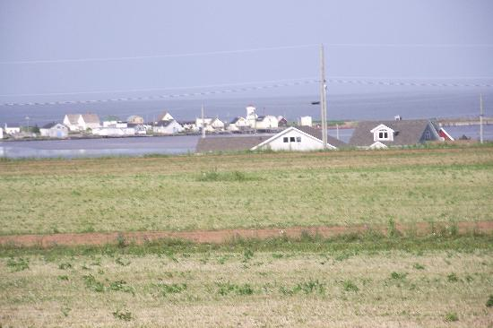 Rustico, Canada: The view from the cottages