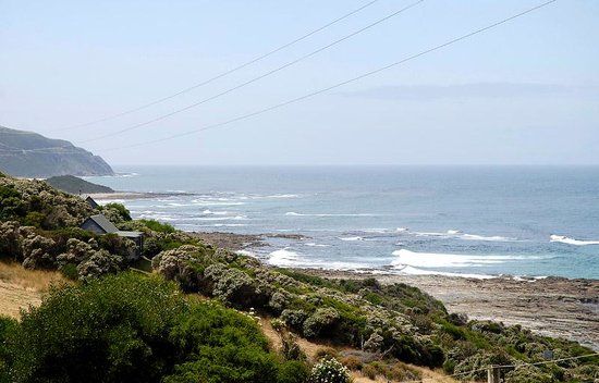 Enjoy the Great Ocean Road and beaches
