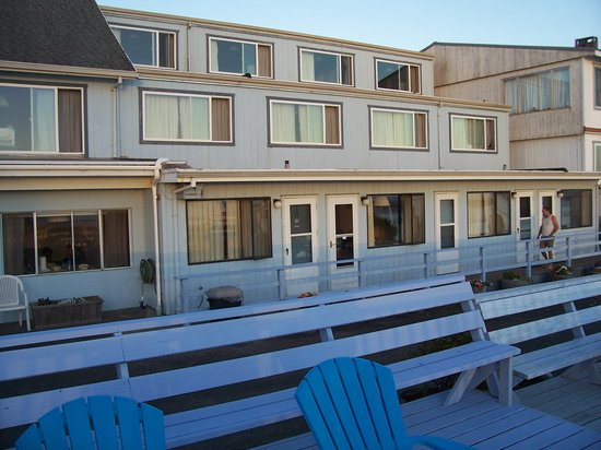 Terimore Lodging by the Sea: the Motel