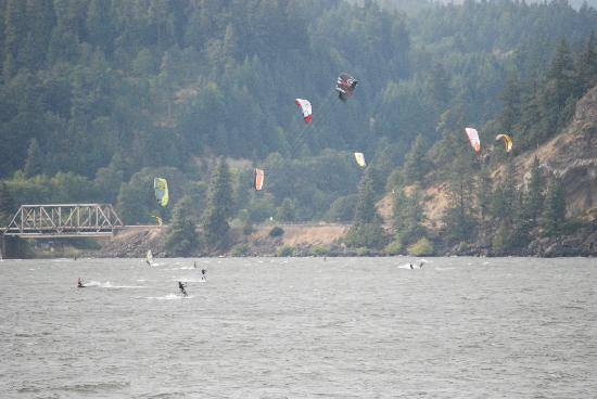 wind surfers in hood river