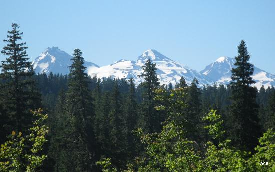 The Three Sisters from highway 126