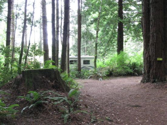 Photo of KOA Campground Crescent City