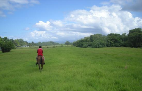 Pranamar Villas and Yoga Retreat: photo from our horse back riding trip to a 10,000 acre ranch
