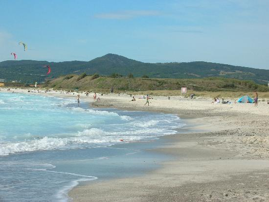 Marina di Bibbona, Italia: spiagge bianche