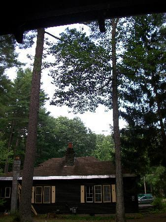 Pine Grove Cottages: Nice views
