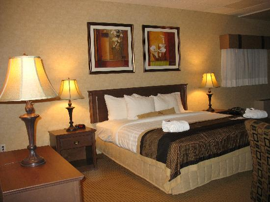 Photo of BEST WESTERN PLUS Sun Country Medicine Hat
