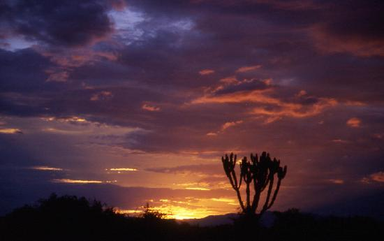 Queen Elizabeth National Park, : A typical sundown at rainy season