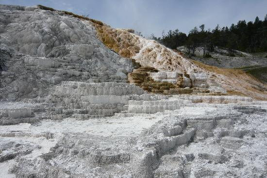 Mammoth Campground: Mammoth Hot Springs