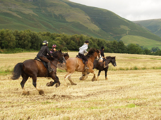 Cumbria, UK: The Farm Ride