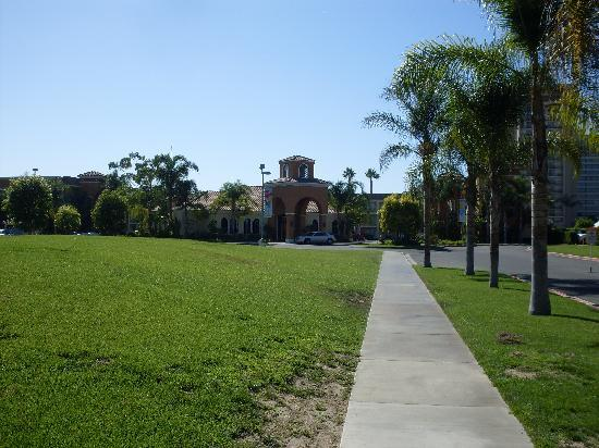 Cortona Inn &amp; Suites Anaheim Resort: Path leading from street to hotel...