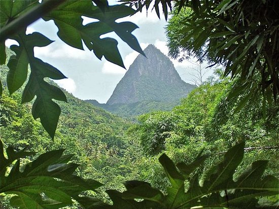 Gros Islet, Sainte-Lucie : Piton from the water fall.