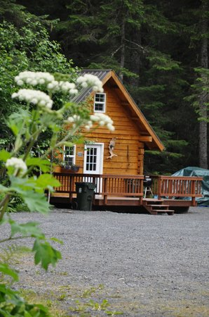 Salmon Creek Cabins: Cabin 4