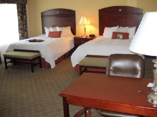 Hampton Inn & Suites Lubbock Southwest: Double Queen room