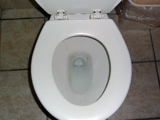Quality Inn: Dirty toilet; this was before we had used it at all. Notice hinges and lid, too.