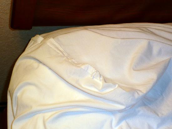Quality Inn: Inside-out fitted sheet on bed (it's all messed up because I pulled it up to check for bed bugs;