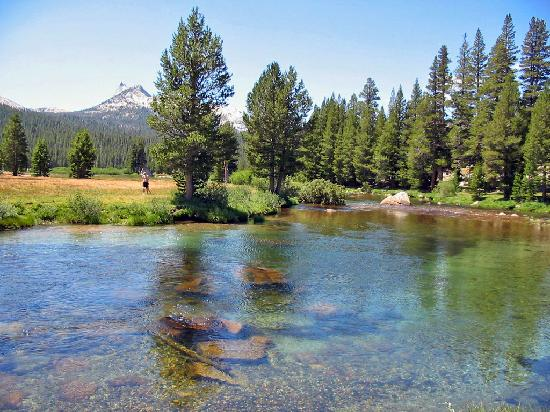Bridge near Parsons Lodge: From Review: TUOLUMNE MEADOWS CAMPGROUND IS PRIME