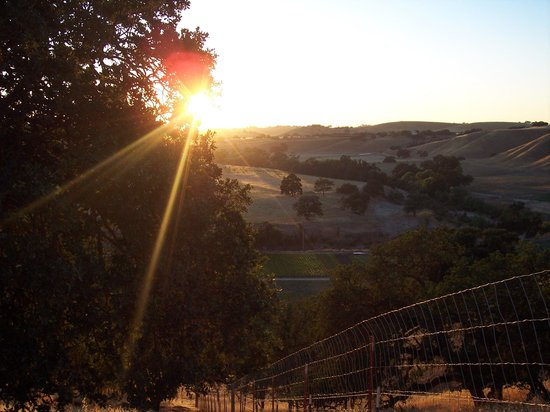 Photo of Windrose Farm Paso Robles