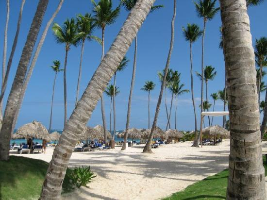 Dreams Palm Beach Punta Cana: Again, lovely beach