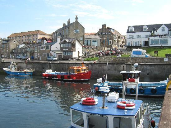 Seahouses, UK: View of the hotel from the harbour.