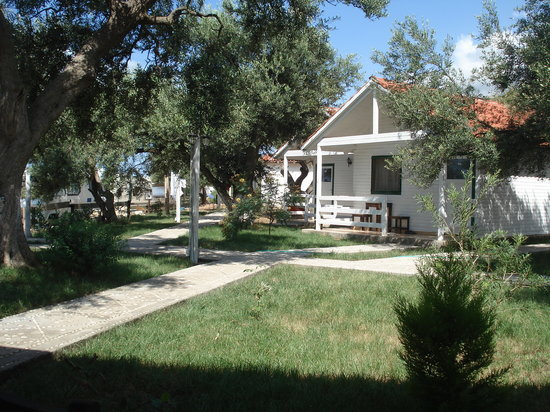 Photo of Drymades Hotel Dhermi