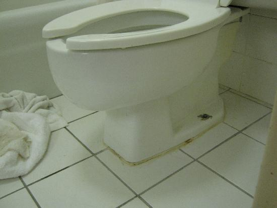 Howard Johnson Clinton: Disgusting toilet