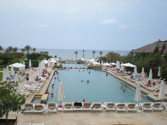 Edde Sands Resort: Trs belle piscine
