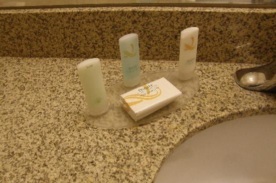 Quality Inn &amp; Suites: amenities