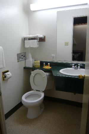 Econo Lodge Convention Center: Bathroom
