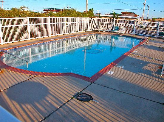 Falcon Motel : Large, Clean Swimming Pool