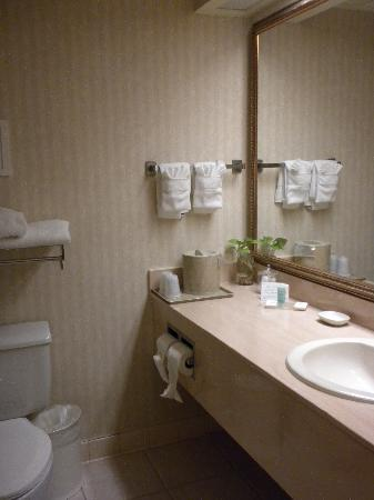 Comfort Inn Shady Grove: the bathroom