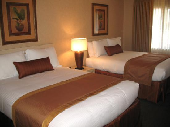BEST WESTERN PLUS Pavilions: Our guest rooms