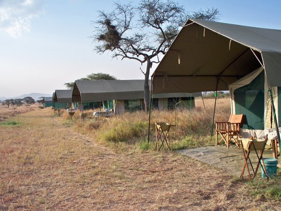 Serengeti Medium Camp