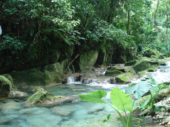 Port Antonio, Jamajka: Reach Falls- the most beautiful place on earth