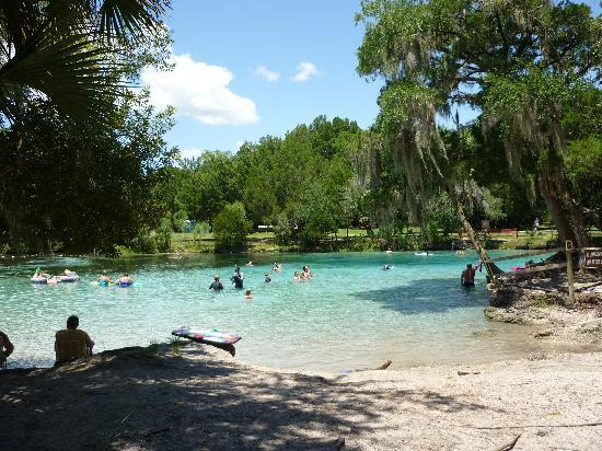 Silver Glen Springs Picture Of Ocala National Forest