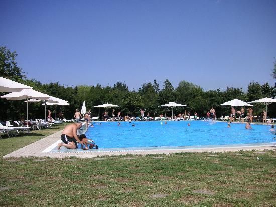 Sarteano, Italy: Our favourite pool surrounded by trees