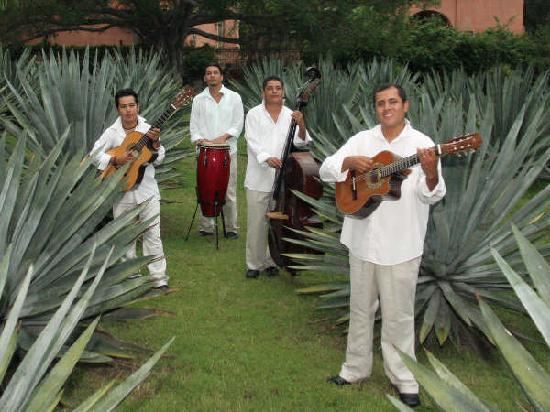Hacienda De Los Santos: Los Hacendados appearing nightly at the Hacienda