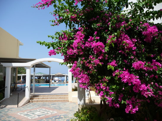 Hotel Alexia Beach