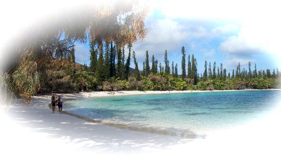 Noumea,  : Iles de pins