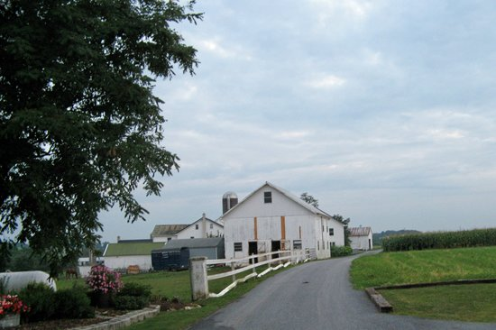 Bird in Hand, PA: the out buildings at the Esh farm